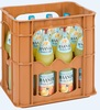 Haaner Bleib in Form Orange 12x0,7l